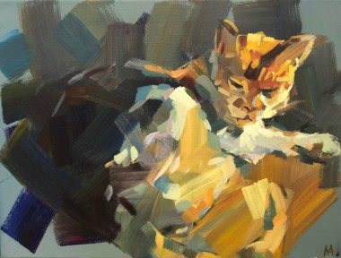 Sunlit Cat