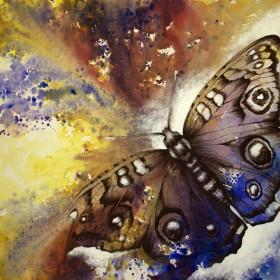 Bullseye Butterfly
