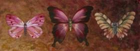 Papilon I
