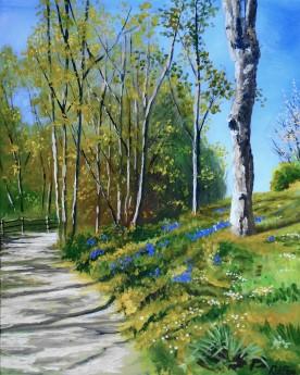 Enbrook Park Sandgate,Sunlight and shadiow, parkland, wildflowers, affordable oil painting, peaceful,trees, woodland, walks, Kent.