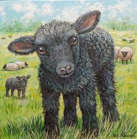 Lamb full view