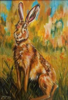 #hare #wildlife #rabbit #countryside