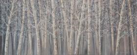 Birch full view