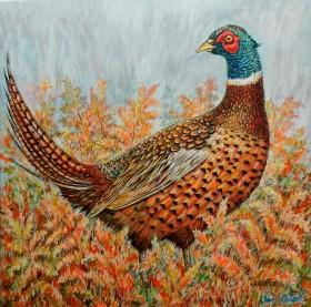 Pheasant  full view