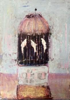 Doves Bird in cage Budgie  Love birds