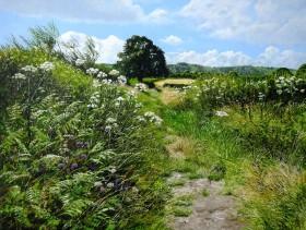 One Sussex Summer
