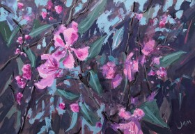 crabapple blossom spring flowers