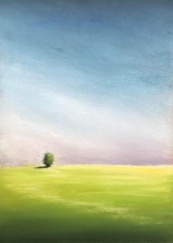 Barley Field, Summer