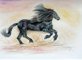 Fine Black Horse. Watercolour