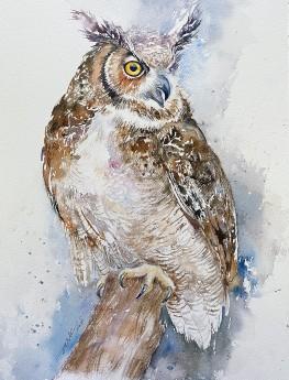 Egor the Owl