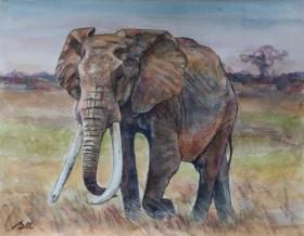 Great Tusker Elephant