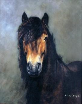 Exmoor pony