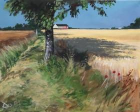 Summer Fields