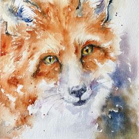 Fiona the Fox