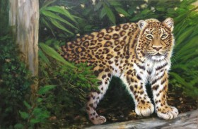 Forest Leopard