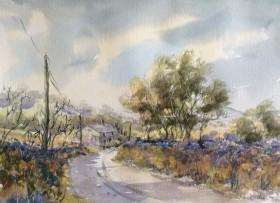 Old Exeter Road Tavistock
