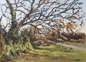 Devon hedge oil painting by David Mather