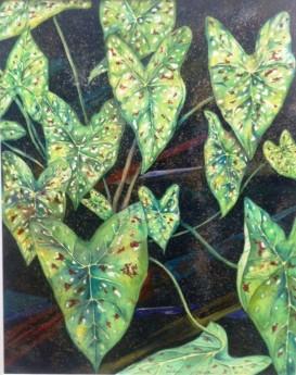 Watercolour & Ink, Caladium Leaves