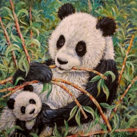Panda full View