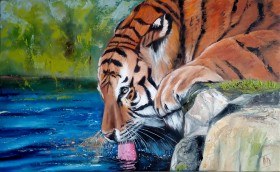 Tiger by the Water