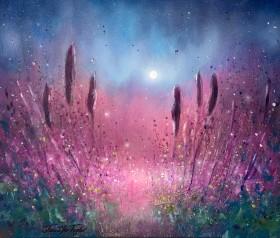 Garden Of Auroras