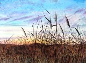 Sunrise on the Fens,Cambridgeshire