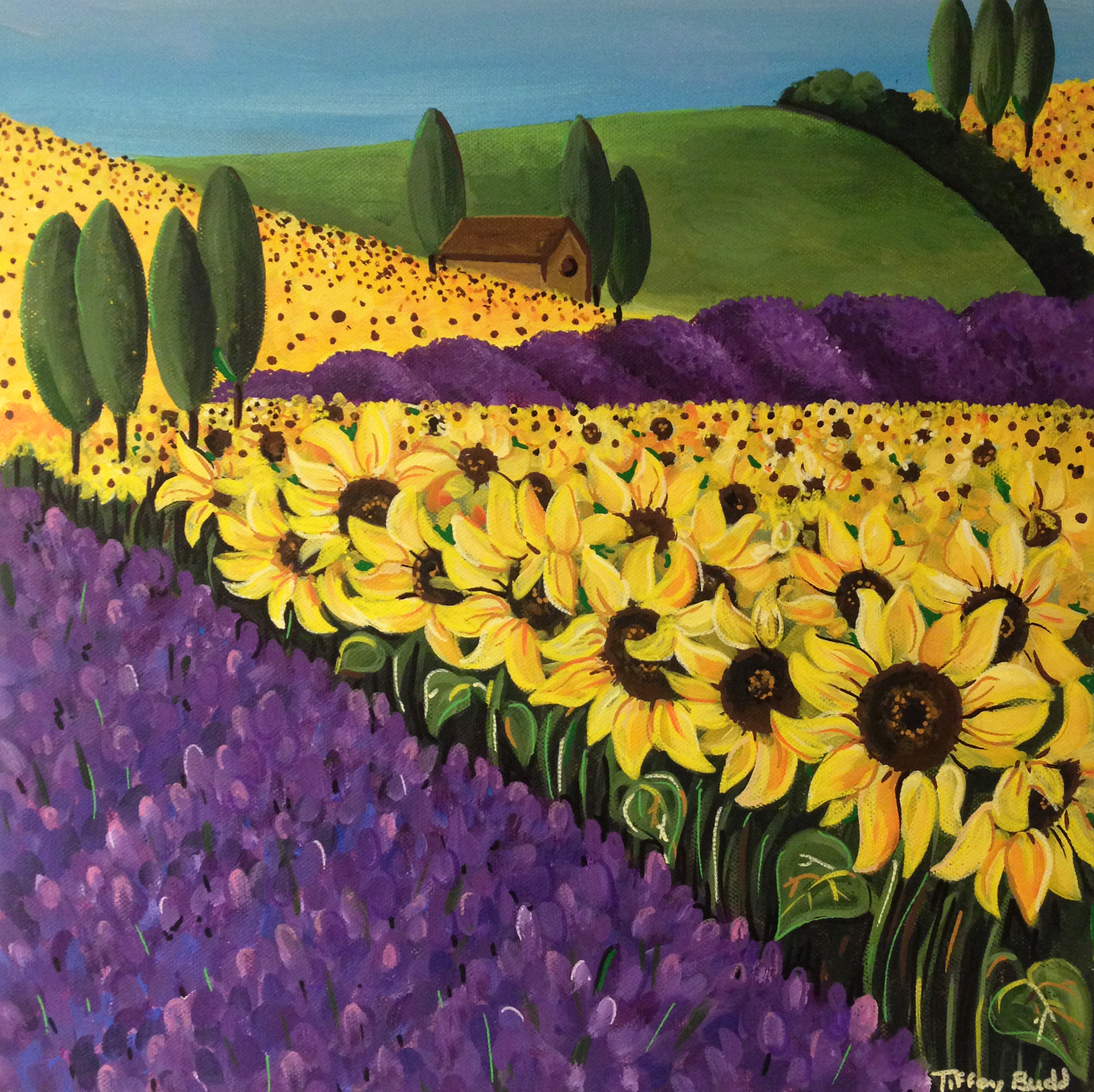 the sunflower and lavender fields by tiffany budd