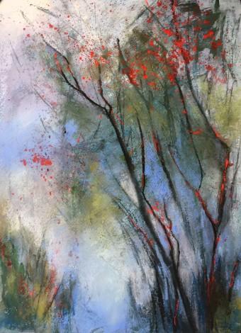 trees,mist,fog,woodland