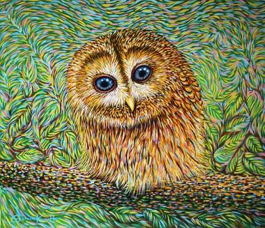 Little Tawny Owl