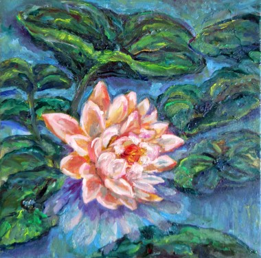 Front view Water Lily