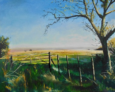 affordable art, December sun, sunlight & shadow, rural, trees, farm, Kent, field gate,