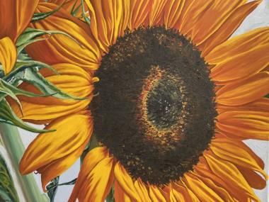 Sunflowers Series no.3