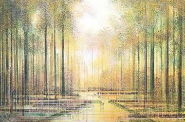 Trees In Warm Evening Light 2021