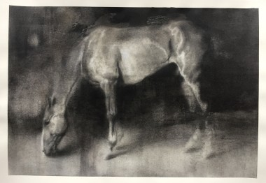 Horse drawing, artwork on paper