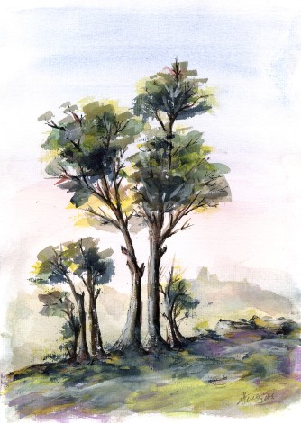 Tree Study watercolor on paper