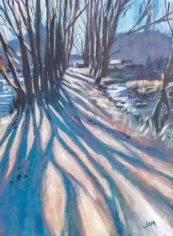 trees shadows shining water winter