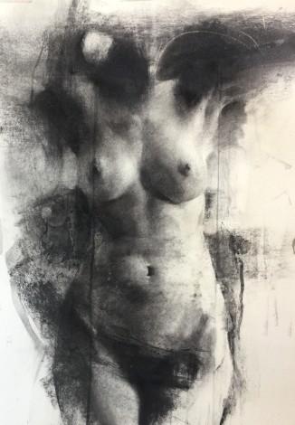 Nude,drawing,figure,woman,charcoal