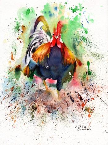 Charging Chicken