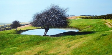 Downland Dew Pond
