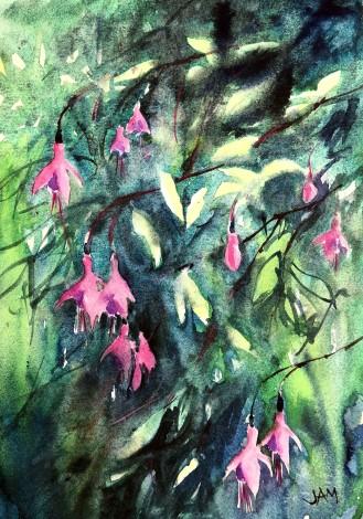 fuchsia flowers green pink