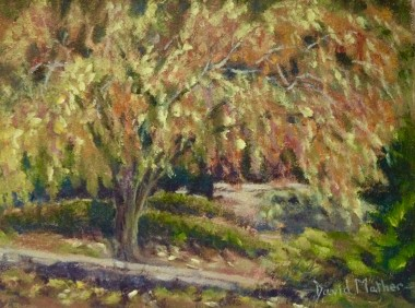 Autumn colours at the Garden house