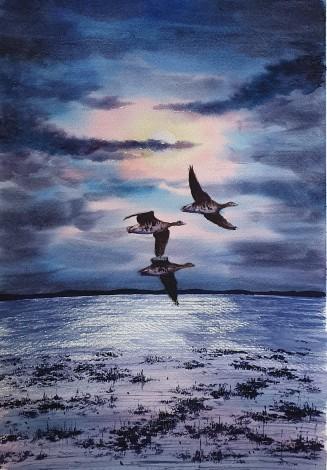 Geese In Moonlight