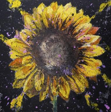 Sunflower Starwars unframed