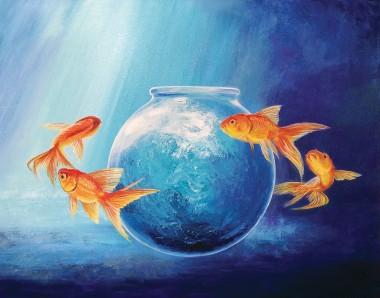Goldfish XV