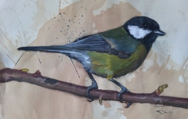 The Great Tit (Parus Major) #May