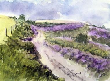 heather path sunny hills green purple