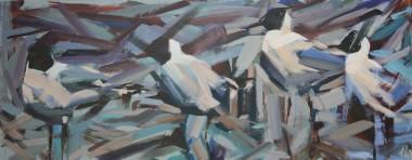 Hooded Gulls Panoramic