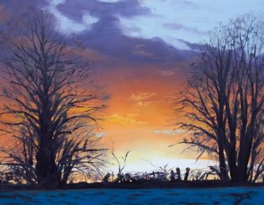 Sunset Through trees, tree silhouettes