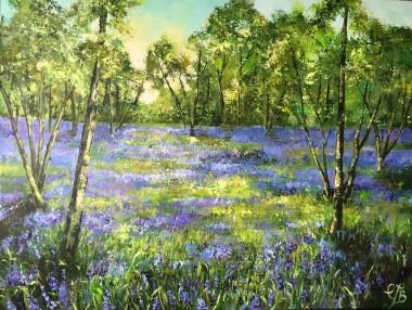 Bluebell wood main image
