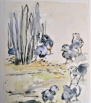 farm animals, watercolour painting